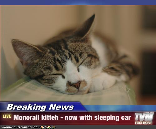 Monorail cat sleeping car